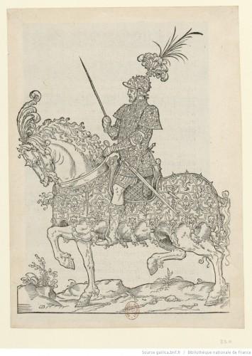 C'est l'ordre qui a esté tenu à la nouvelle et joyeuse entrée, que très-hault, très-excellent et très-puissant prince, le Roy très chrestien Henry deuxième de ce nom, a faicte en sa bonne ville et cité de Paris, capitale de son Royaume le seiziesme jour de Iuin M. D. XLIX (BNF, París)