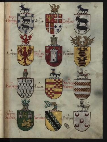 """Armas de diversos """"linhagens"""" históricos lusos: Pachecos, Cabrales, Veigas..."""